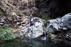 Kleiner Naturteich im Barrancobett