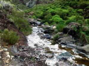 Wasser im Barranco Seco