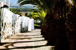 hübschangelegte Wege in Alcalá