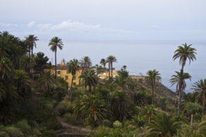 Herrenhaus La Casona umgeben von Palmen