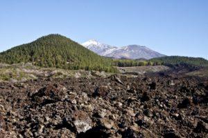 Geröll, Kiefernwald und Ausblick auf die Teidegipfel