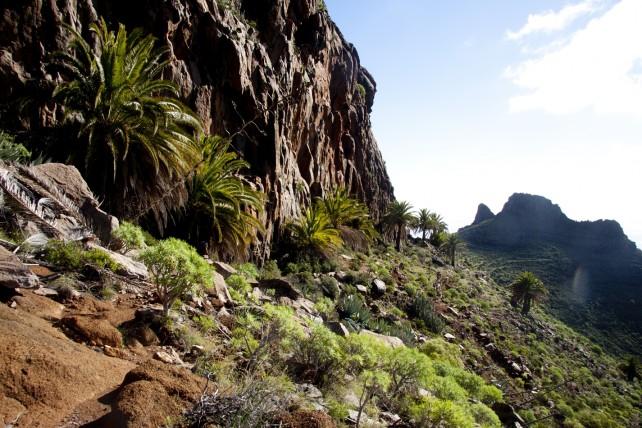 an Abhängen und an Felswänden entlang