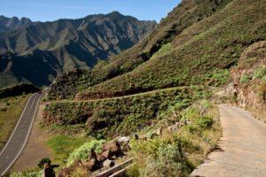Ausgangspunkt der Wanderung - die GM-1 und die alte Carretera