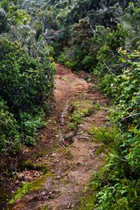 Pfad nach Tierra del Trigo