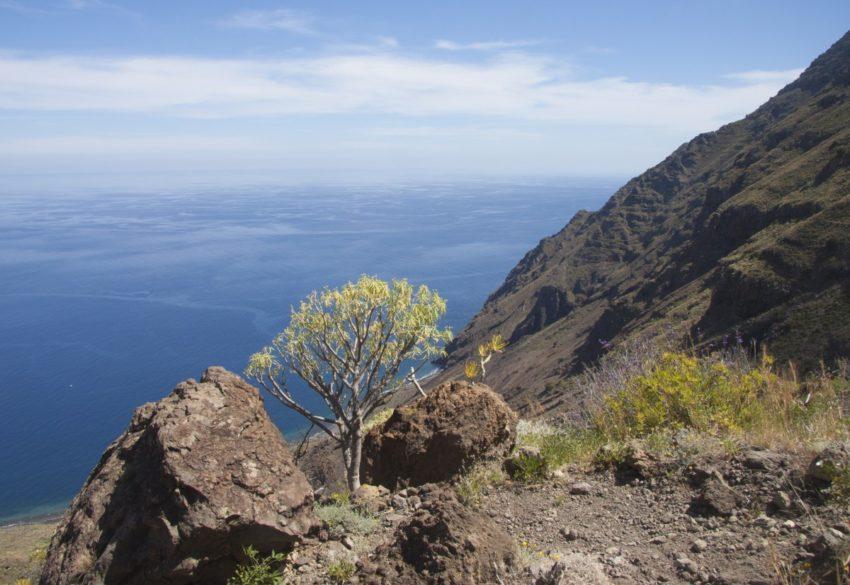 steil führt der Pfad hinab nach Las Playas