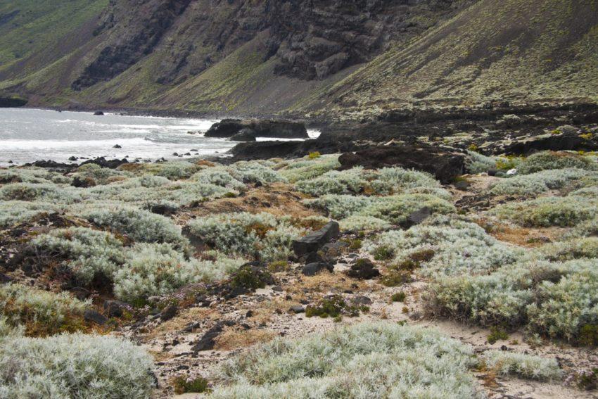 Playa Arenas Blancas