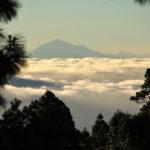 Blick Tenerife