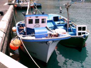 Boote in Tazacorte