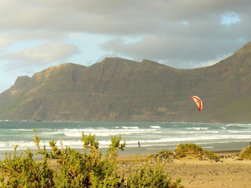 Kitens auf Lanzarote