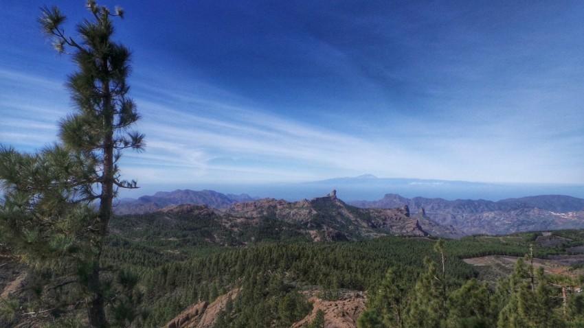 Mit Rollstuhl nach Gran Canaria