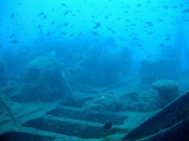 Unterwasserwelt Tauchen Gran Canaria