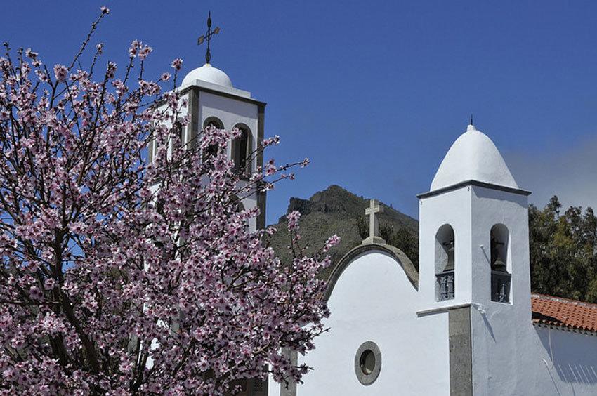 Mandelblüte in Santiago