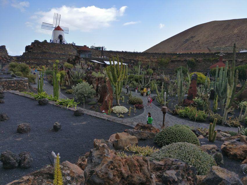 Der Kaktusgarten César Manriques.
