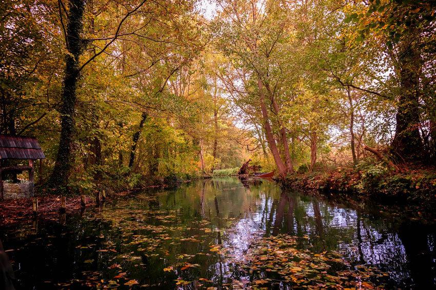 herbstlicher Kanal im Spreewald