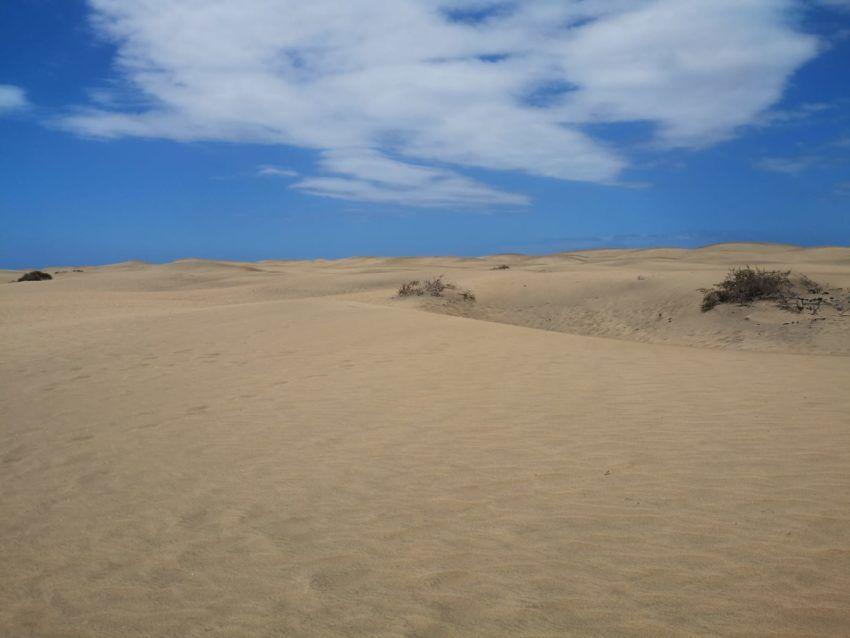 Sanddünen mit blauem Himmel