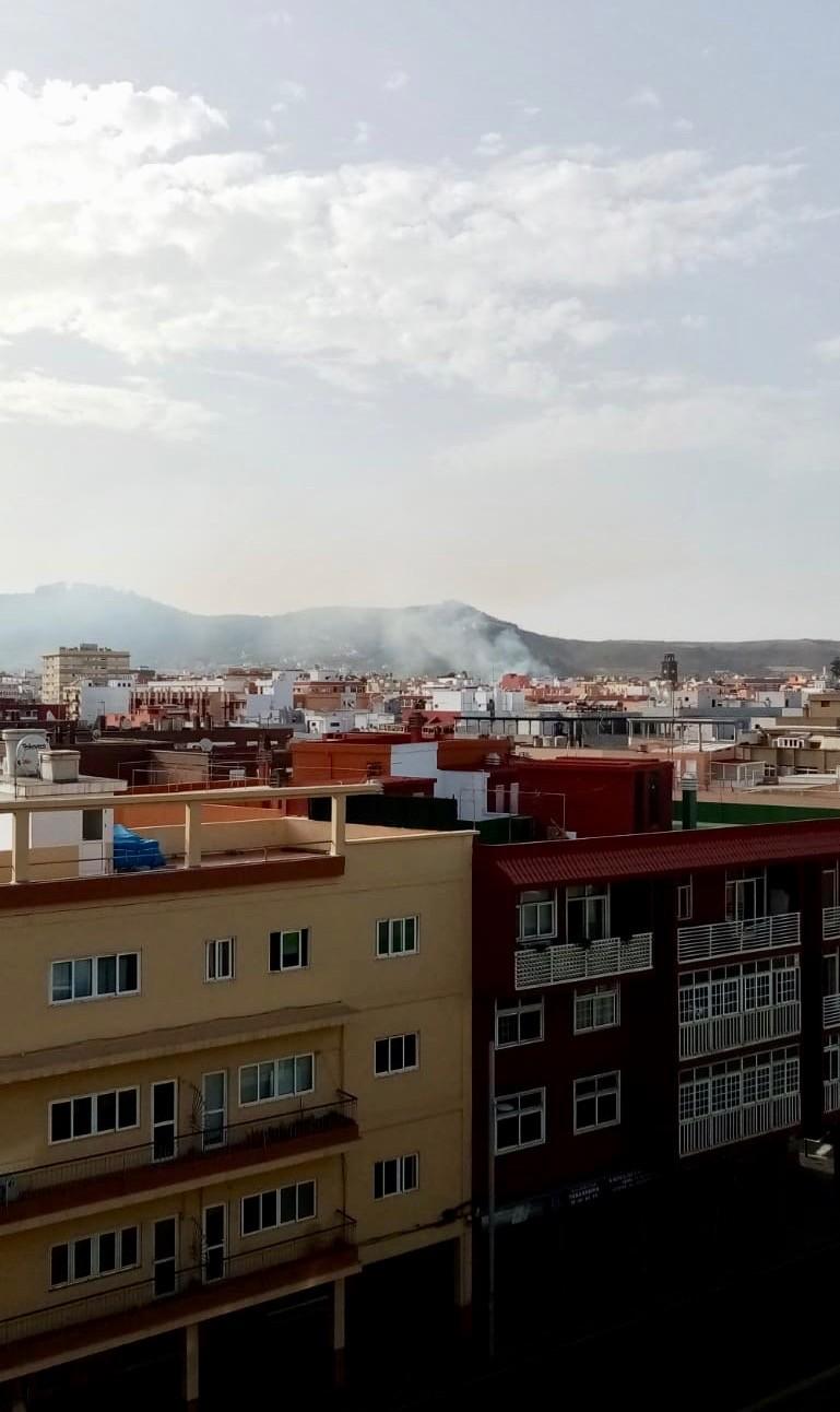 Rauchwolke über La Laguna