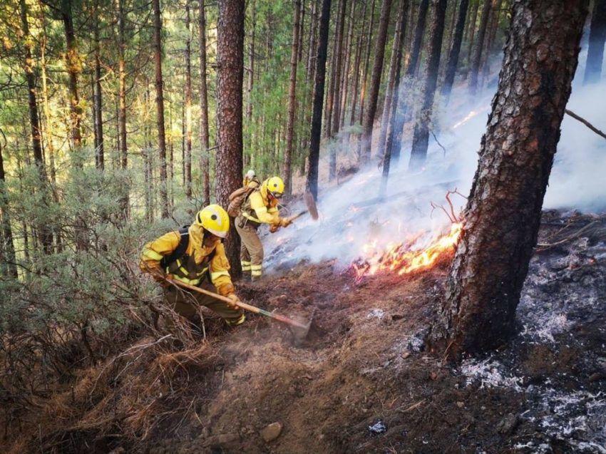 Waldbrände Gran Canaria