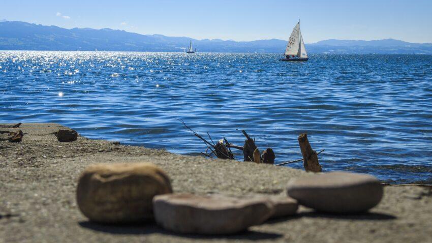 Blick vom Ufer auf den Bodensee mit Segelboot